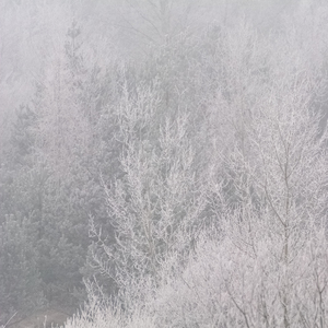 Ticho zimy