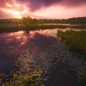 Woorgreens lake