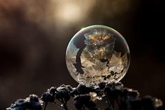 bublinky v zime...