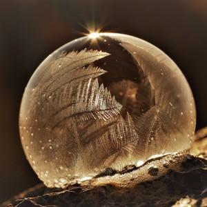 bubliny v zime
