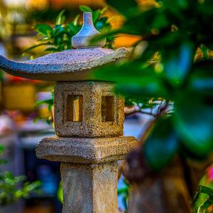 Azijska zahrada