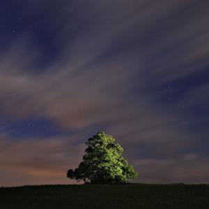 Pod noční oblohou