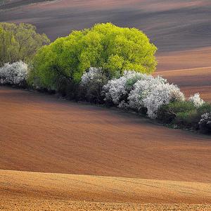 Jarní Morava