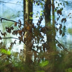 len nezablúdiť v lese