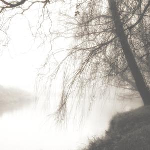 o fotografovaní a hmle