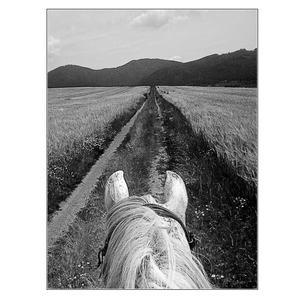 long long way to mountains