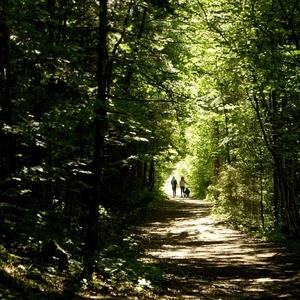 poďme do prírody