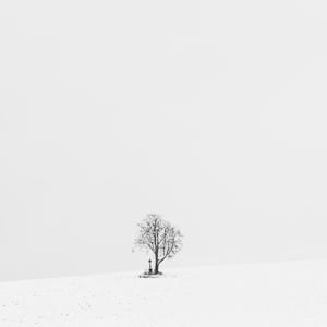 Odtiene bielej