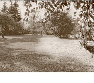 retro v parku