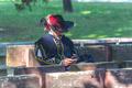 SMS od D'Artagnana