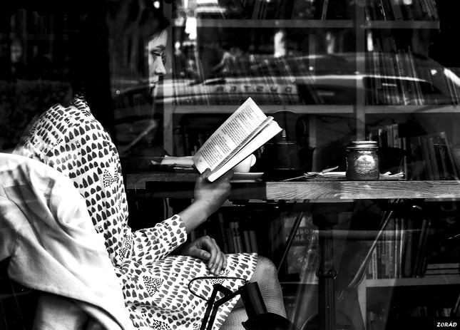 Dievča s knihou