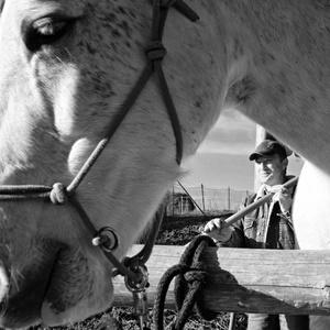 pre koníka urobí všetko