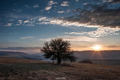 Januárový západ slnka nad kopcom