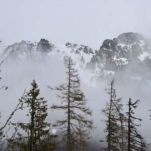 Tatry v hmle