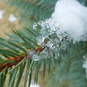 Snežilo