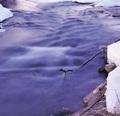Posledné ľady Vlárske...
