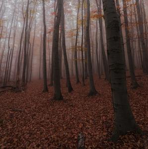 Jesenna pohoda
