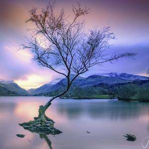 Pri jazere v horach