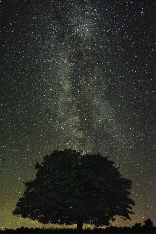 Hviezdna noc...