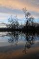 rameno rieky Nitry
