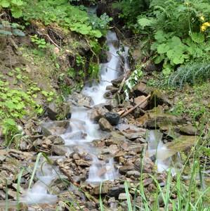 prameň rieky Papradňanka