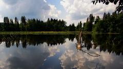 letny den na jazere