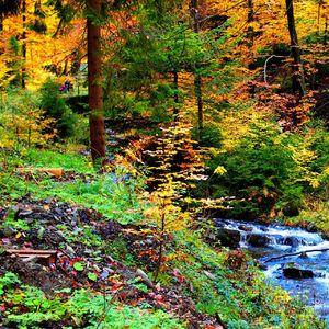 Jesenné farby udolie Lesnica 2