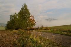 Podzimní mlhy