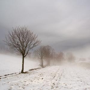 Když mlha zalehne