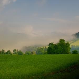 Mlha v údolí