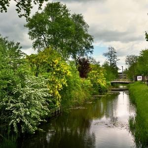 Holandské kanály