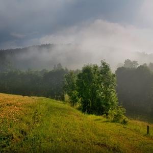 Když mlha prohrává