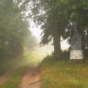 Mlha u křížku