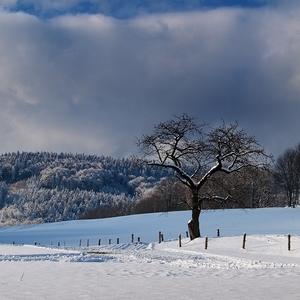 Správná zima