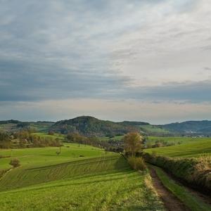 Moravské kopečky