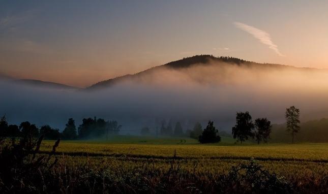 Než se mlha zvedne