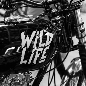 WILDiE LIFE