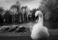 strážca labutieho jazera :-)