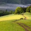 Horní Lomná, cesta na Kamenitý