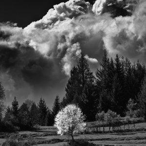 pod oblakmi