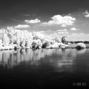 Dunajský záliv