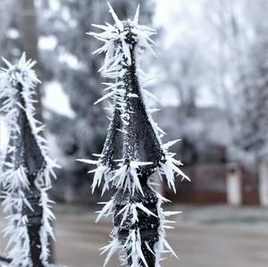 ostrá zima