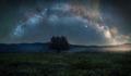 Narodný park Poloniny