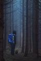 Tajuplný lesík