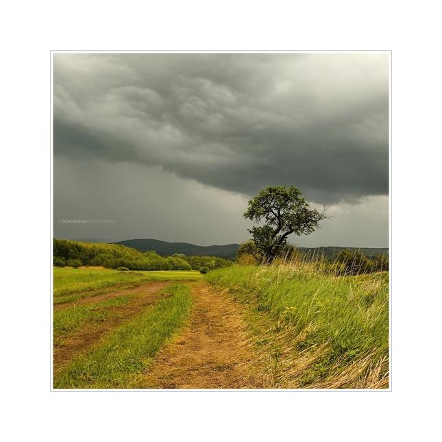 Bude pršať