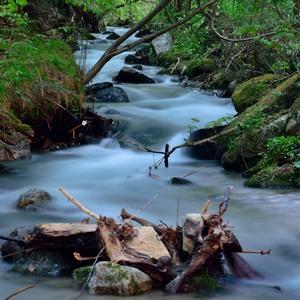 tichá voda
