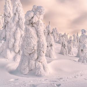 Snežní mužíci na Veľkom Choči