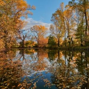 Jeseň na rybníčku