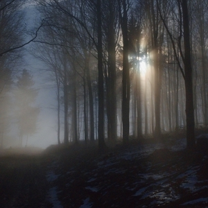 Hľadanie cesty k svetlu