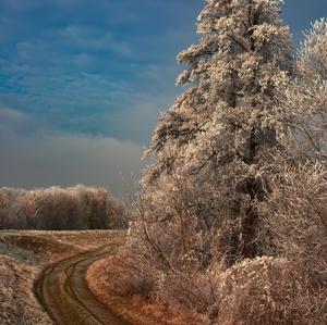 Cestou okolo zimy